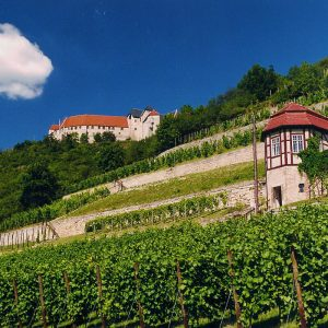 WeinKulturReise (5 Übernachtungen)